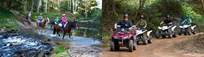Glenworth Valley Horse Riding and Quad Biking, LifeSocial